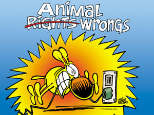 animal wrongs - desktop wallpaper